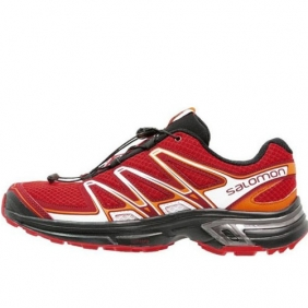 SALOMON WINGS  FLYTE 2 (379146)